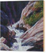 Rushing Waters two Wood Print