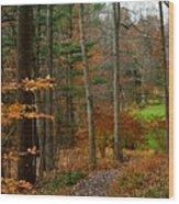 Russet Days Wood Print