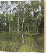 Russia Wood Print