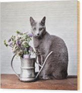 Russian Blue 02 Wood Print by Nailia Schwarz