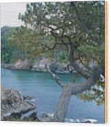 Russian Gulch Wood Print