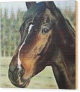 Russian Horse Wood Print