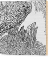Russian Owl Wood Print