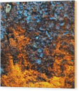 Rust Abstract 3 Wood Print