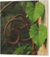 Rust Vine Wood Print