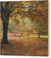 Rustic Autumn  Wood Print