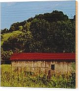 Rustic Barn In Carthage Tennessee Wood Print