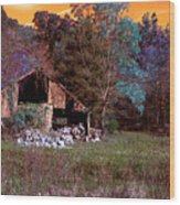 Rustic Barn In Disrepair False Color Infrared Wood Print