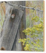 Rustic Fence And Wild Flowers Montana Wood Print