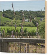 Rustic Fence In Wine Country Wood Print