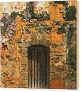 Rustic Fort Door Wood Print