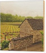 Rustic Italian Cottage Wood Print by Denise Darby