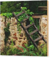 Rustic Ladder Wood Print