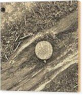 Rustic Nail Wood Print