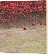 Rustic Poppy Garden Wood Print