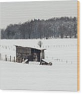 Rustic Shed In The Winter Wood Print