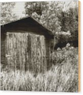 Rustic Shed Wood Print by Perry Webster