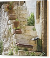 Rustic Steps In Crete Wood Print