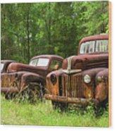 Rusty And His Pals Wood Print