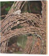 Rusty Barb Wood Print