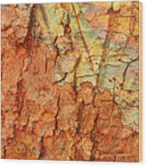 Rusty Bark Abstract Wood Print