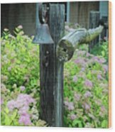 Rusty Bell On Weathered Fence Wood Print