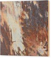 Rusty Drum #1 Wood Print