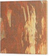 Rusty Drum #2 Wood Print