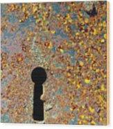 Rusty Key-hole Wood Print by Carlos Caetano