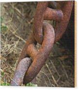 Rusty Links Wood Print