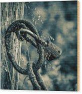 Rusty Lock And Chain Wood Print
