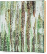 Rusty Metal Background  Wood Print