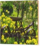 Rusty Plow In Daffodils  Wood Print