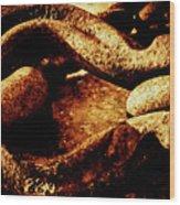 Rusty Shackle. Wood Print