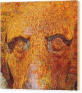 Rusty The Lion Wood Print