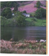Rydal Water Wood Print
