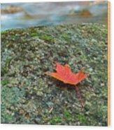 Sabbaday Brook Wood Print