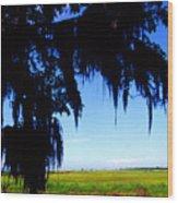 Sabine National Wildlife Refuge Along The Creole Nature Trail Wood Print