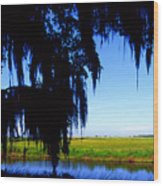 Sabine National Wildlife Refuge Wood Print