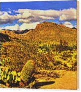 Sabino Canyon Panorama No. 1 Wood Print