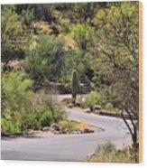 Sabino Canyon Road Wood Print