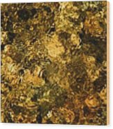 Sabino Creek Bottom Wood Print