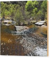 Sabino Creek Wood Print