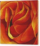 Sabrina's Rose Wood Print