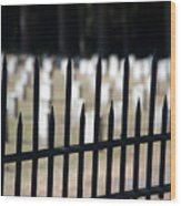 Sackets Harbor Military Cemetery Wood Print