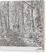 Sacred Grove Wood Print