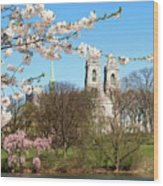 Sacred Heart And Branch Brook Cherry Blossoms  Wood Print