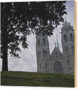 Sacred Heart Cathedral Newark New Jersey Wood Print