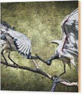 Sacred Ibis Photobombing Wood Print