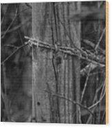 Sacred Wood Print